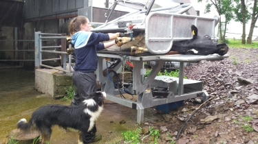 Irish Nuffield Scholar Maeve O'Keeffe demonstrates her Inspect 4 turnover crate